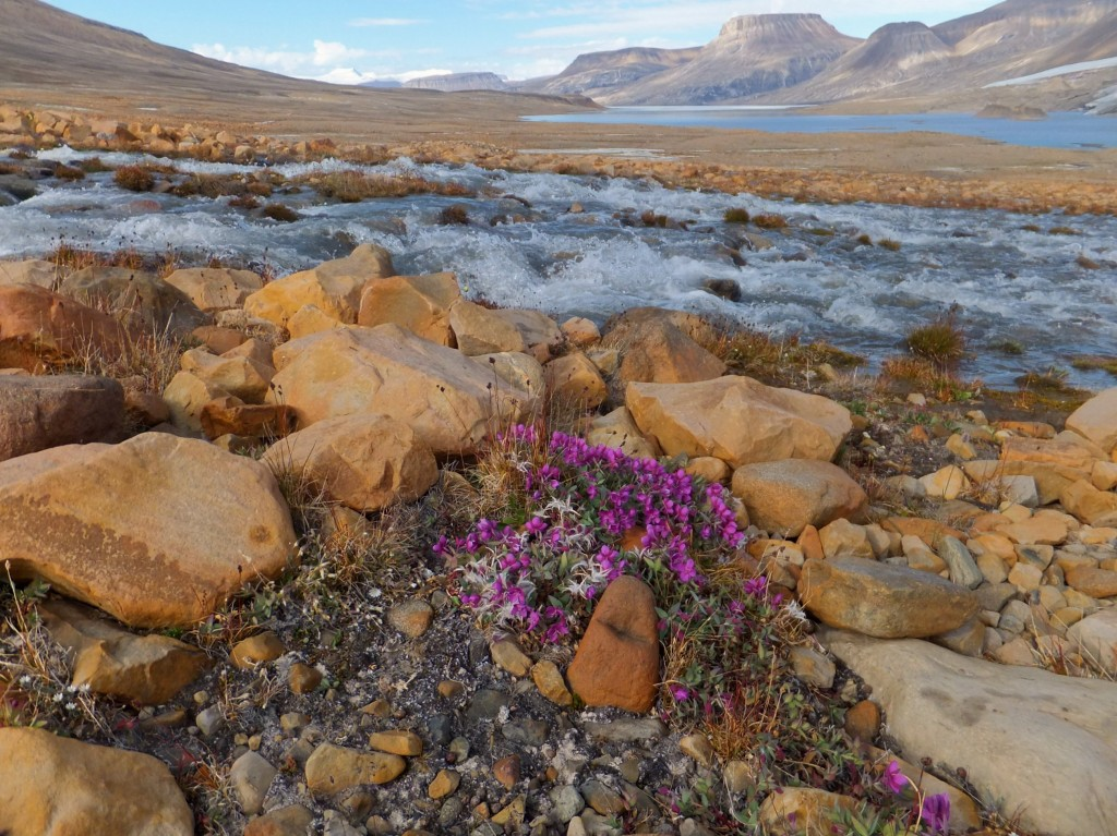 10 Largest Islands In The World: Ellesmere Island