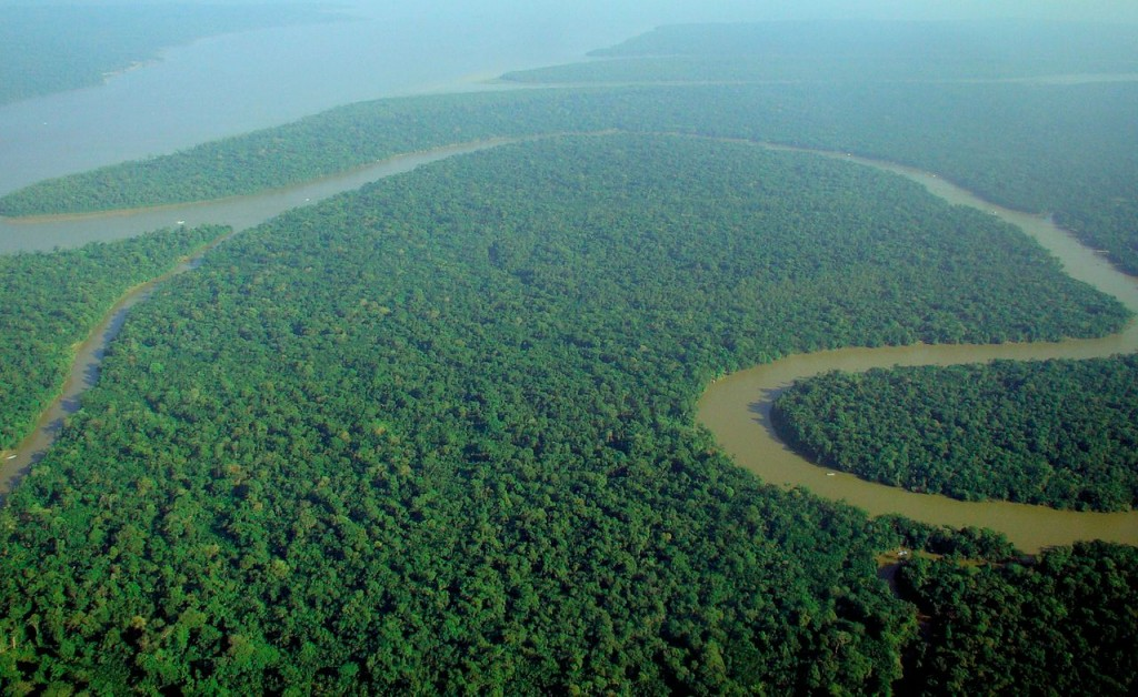 10 Longest Rivers In The World: The Amazon
