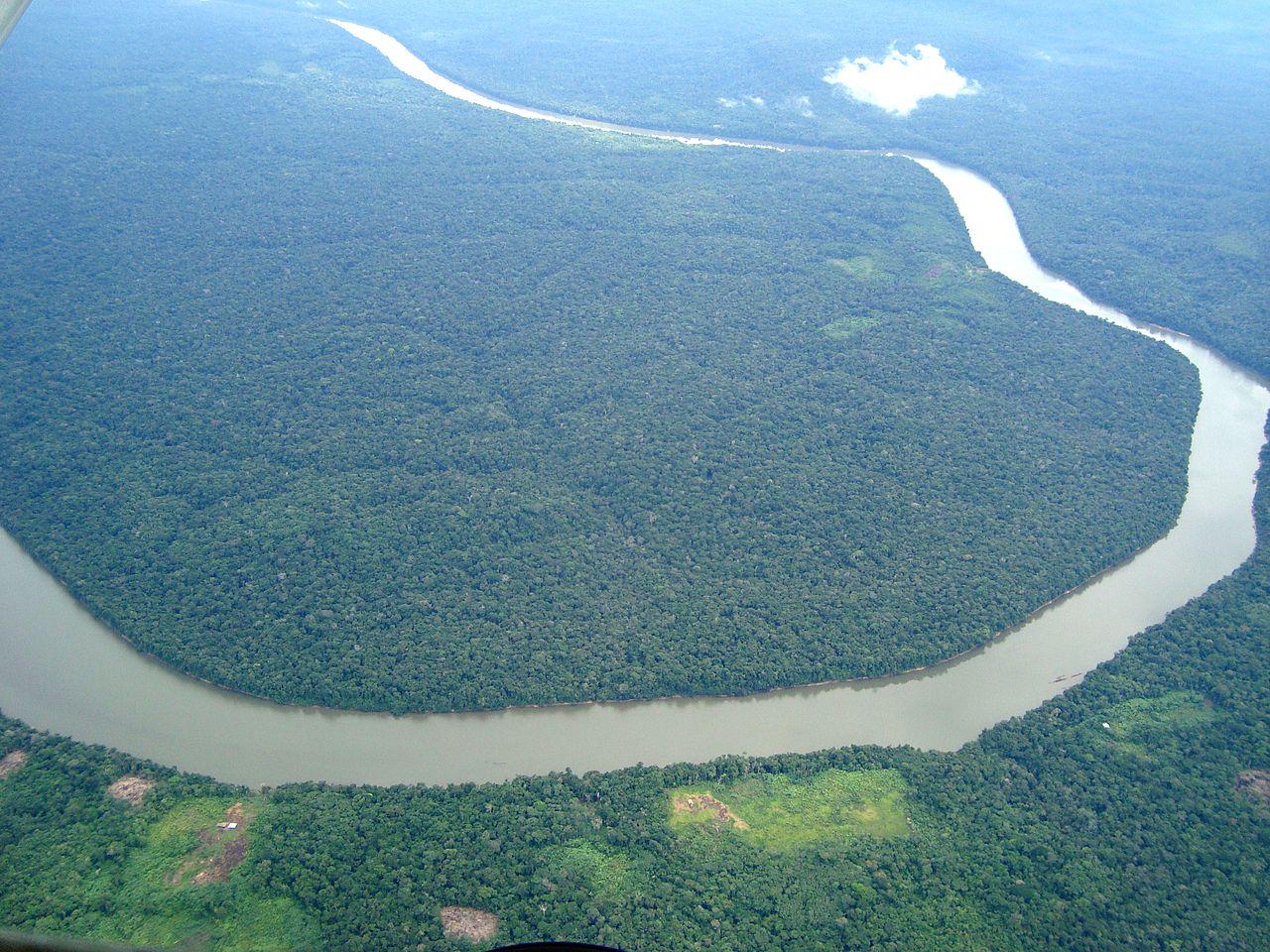 amazon rainforest south america - photo #35