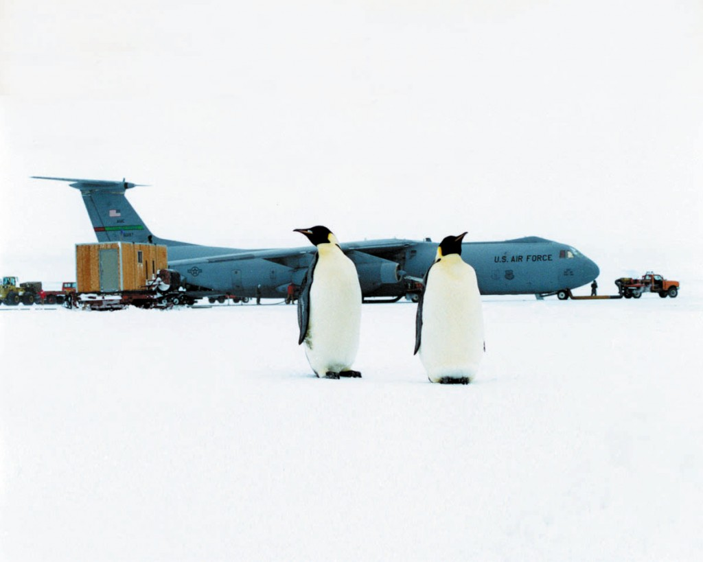 Ice Runway, Antartica - Penguins rarely approach the planes