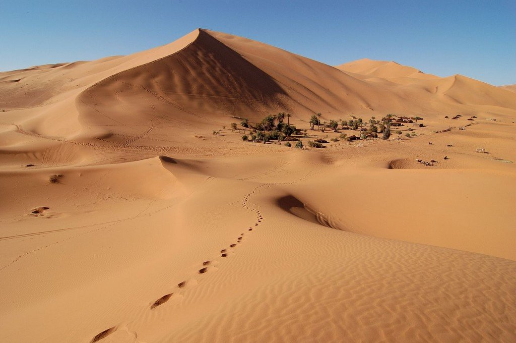 Sand dunes in Erg Chebbi, Morocco  (source: wiki)