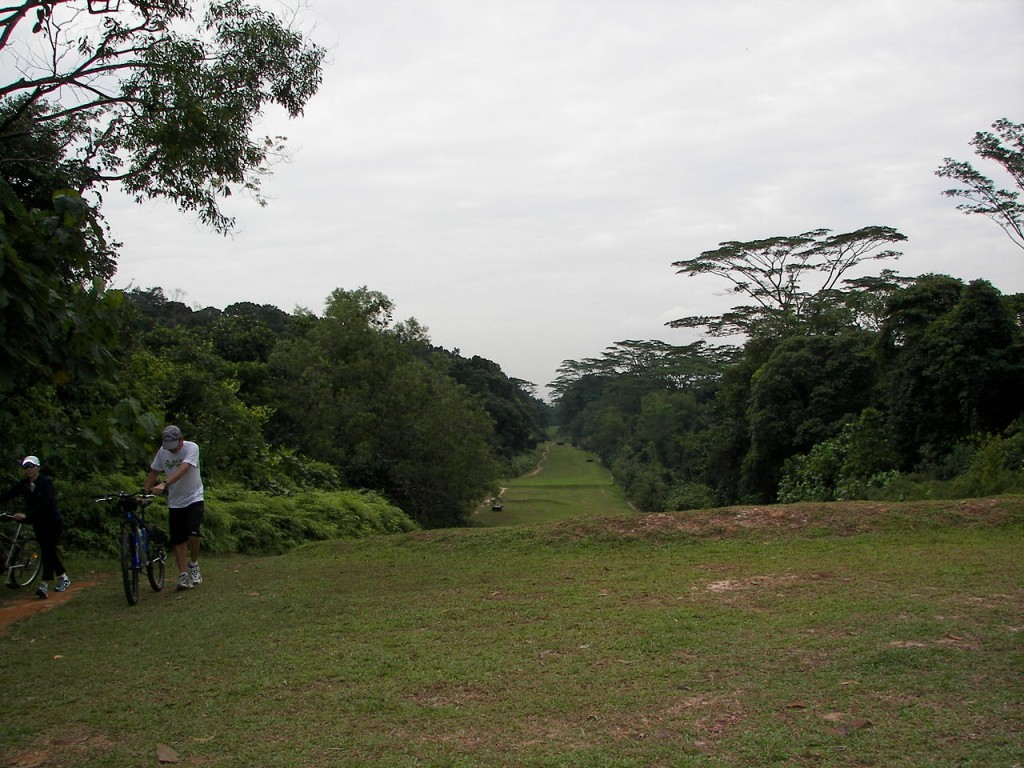Most Famous Urban Parks: Bukit Timah Nature Reserve, Singapore