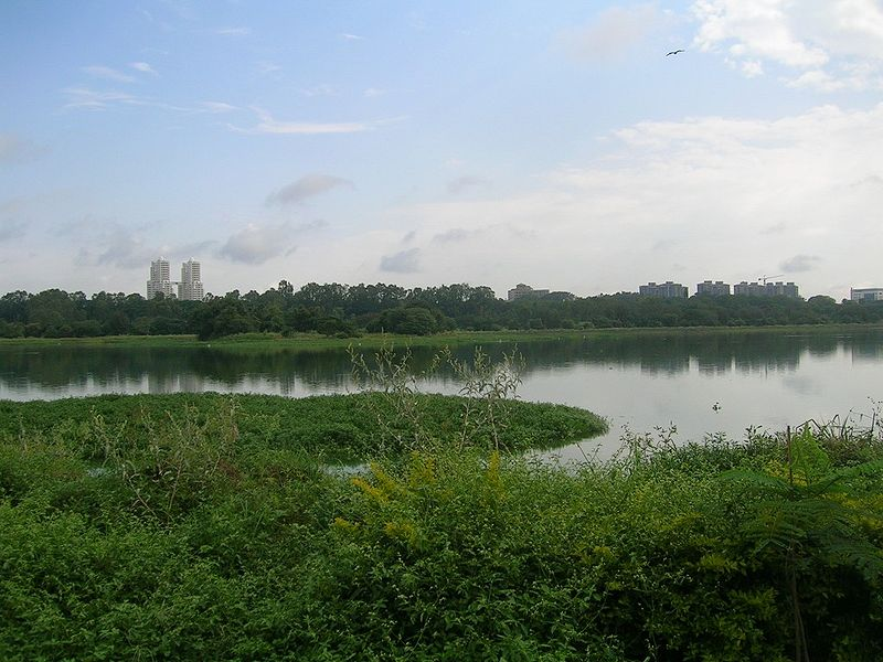 Hebbal Lake, Karnataka, India