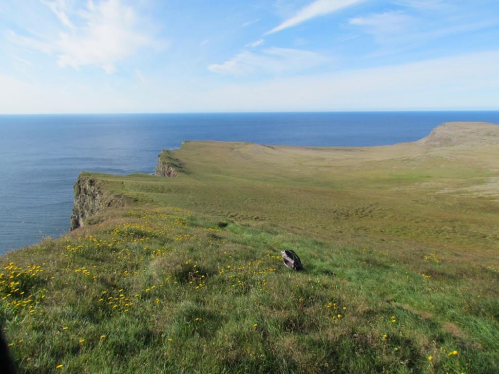 Best Attractions In Iceland: Latrabjarg Sea Cliffs