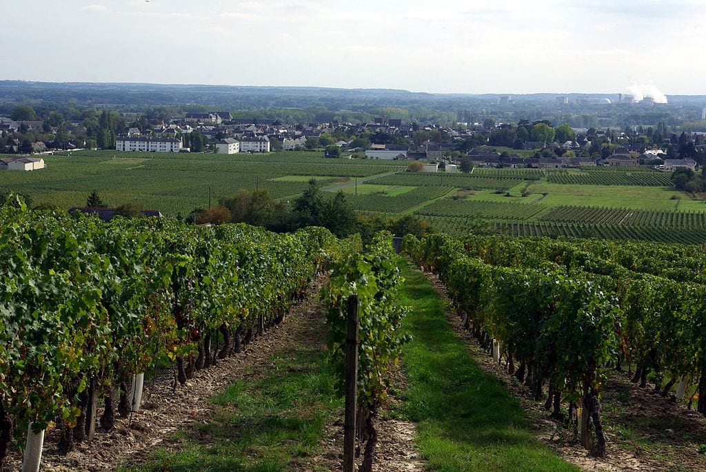 Best Wine Tours Destinations In The World: Loire Valley, France