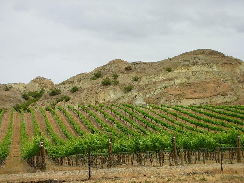 Best Wine Tours Destinations In The World: Central Otago Wine Region, New Zealand