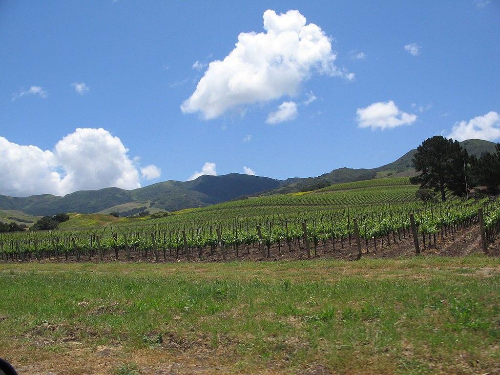 10 Best Attractions In California: Wine Tour. Santa Ynez Valley in California