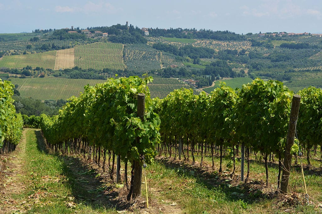 Best Wine Tours Destinations In The World: Tuscany