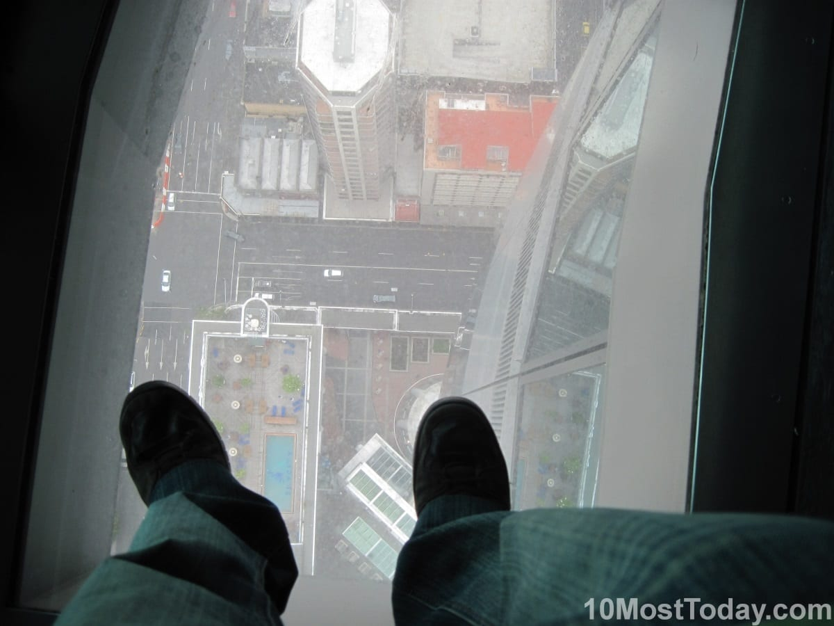 Unforgettable Skywalks: Sky Tower, Auckland