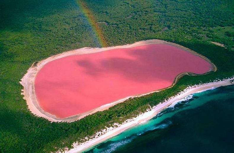 Most Unique Lakes In The World: Pink Lake (Lake Hillier), Australia