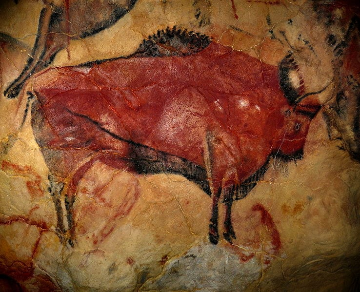 A reproduction of a bison drawing in the Altamira Cave