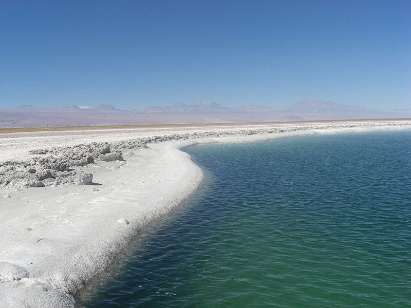 Laguna Ceja in the Salar de Atacama, Chile