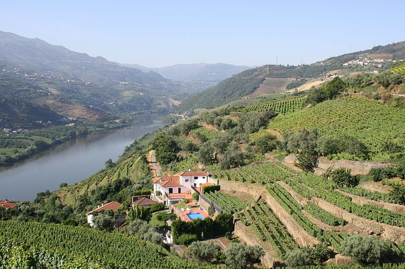 Best Attractions In Porto:  Douro Valley tour or Douro River cruise