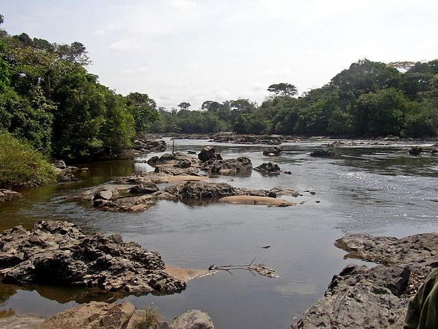 The Okapi Wildlife Reserve, Democratic Republic of the Congo
