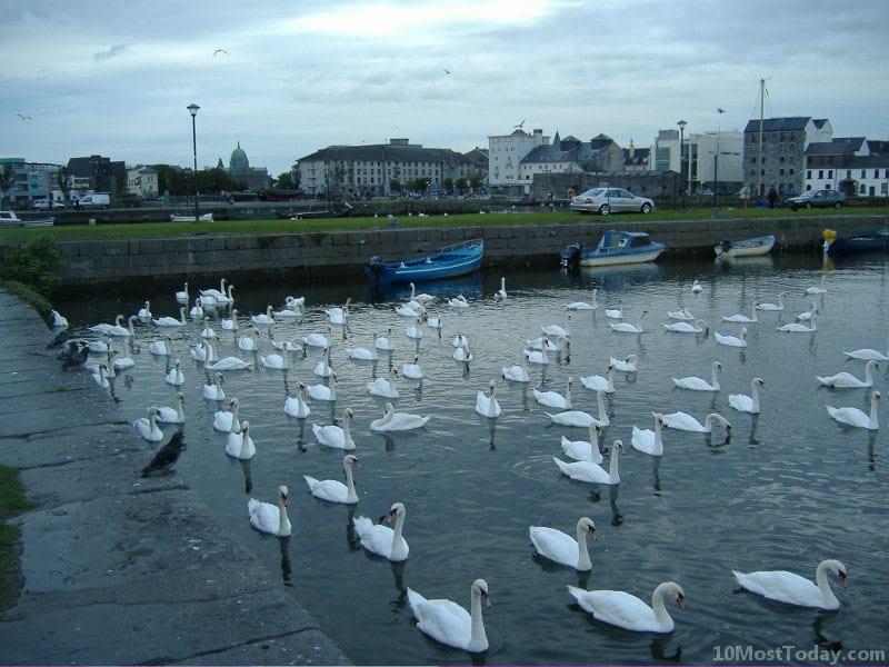 Best Attractions In Ireland: Galway