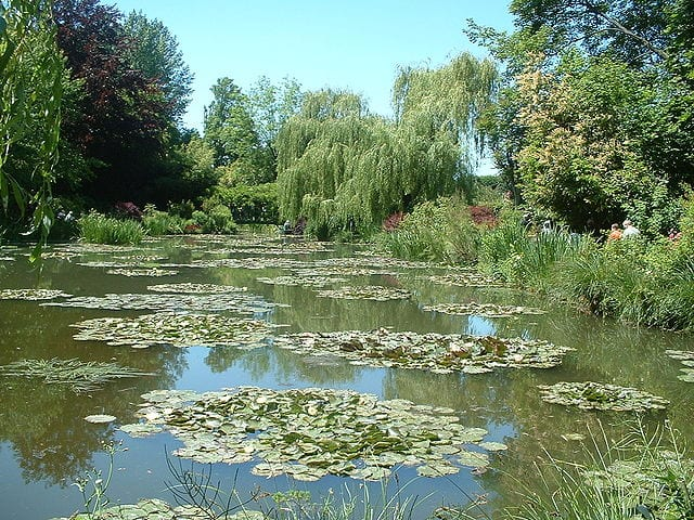 Best Attractions In Normandy: Water Lilies in Claude Monet's Garden, Giverny
