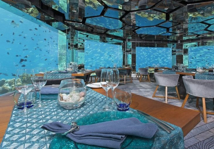 Intoxicating Underwater Restaurants
