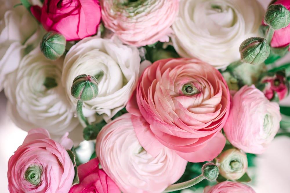 Most Popular Wedding Flowers - Ranunculus