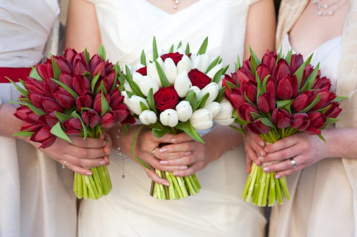 Most Popular Wedding Flowers - Tulip