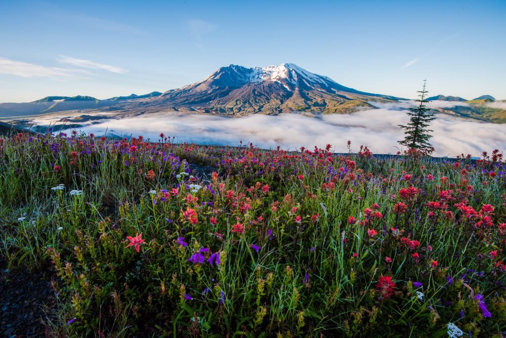 Most Stunning Volcanoes - Mount St Helens