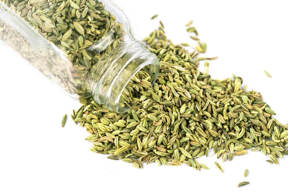 Most Nutritious Seeds - Fennel Seeds