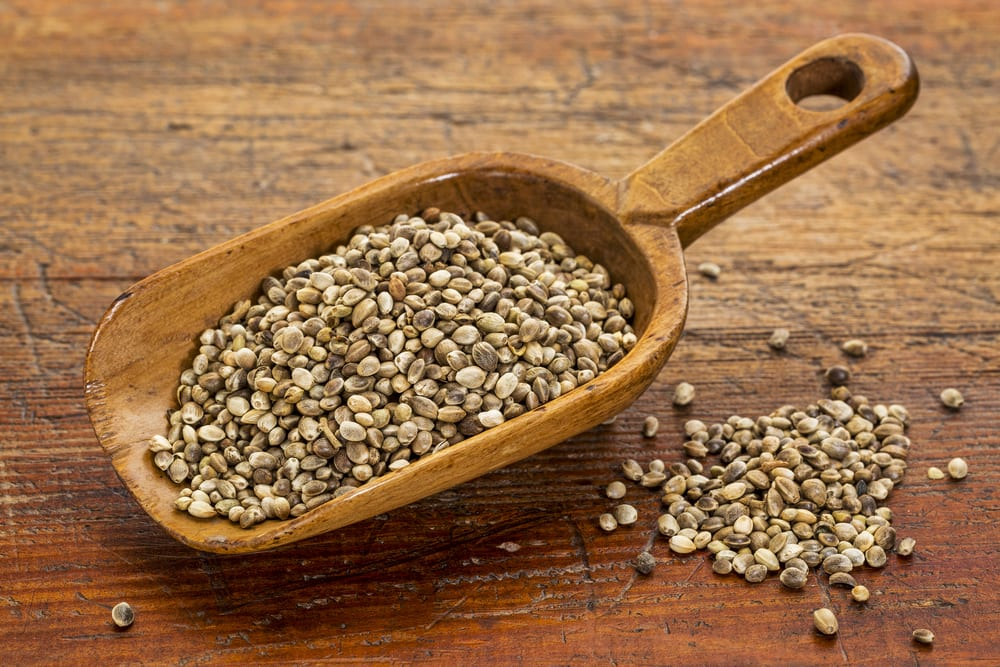 Most Nutritious Seeds - Hemp Seeds