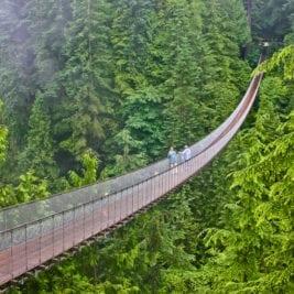 Most Dangerous Bridges - Capilano Suspension Bridge
