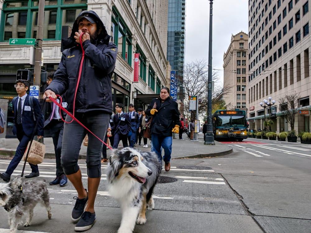 Most Pet Friendly Cities - Seattle WA