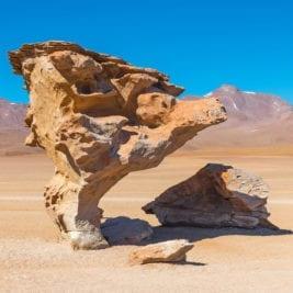 Rarest Rocks - Stone Tree in Bolivia