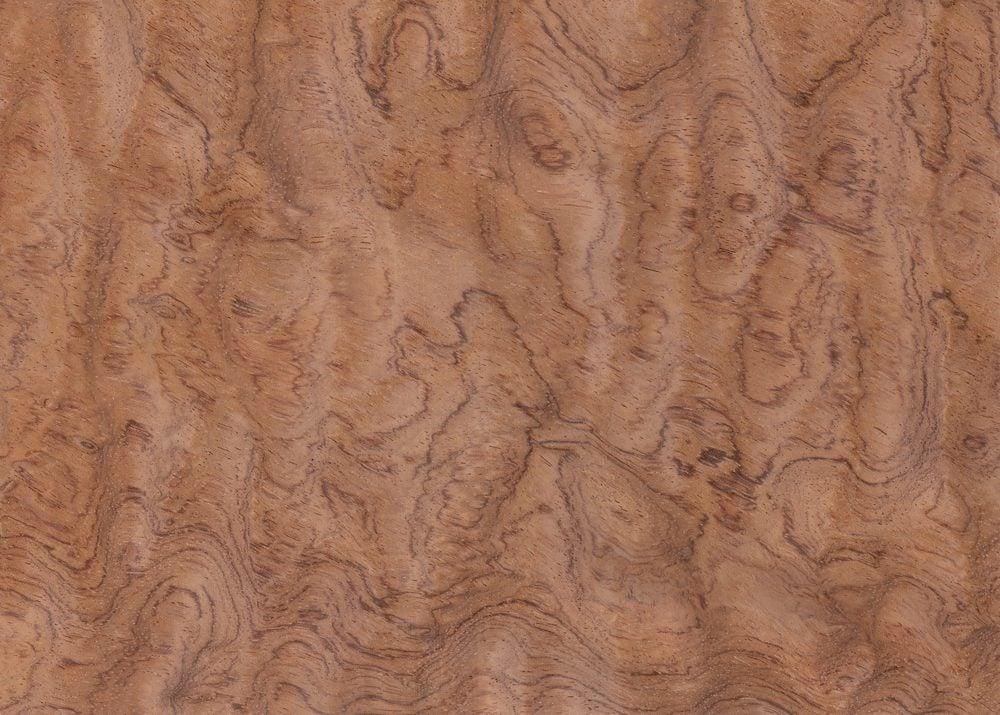 Most Expensive Wood - Bubinga